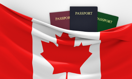 Check Out Immigration Officers' Suggestion For Hassle-free Settlement In Toronto