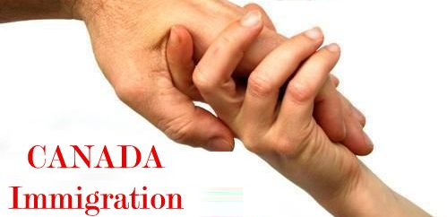 Vital Traits To Look For While Finding The Best Immigration Consultant In Mississauga